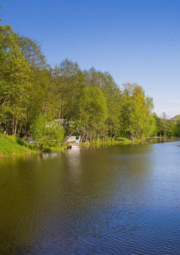 Вид на пруды