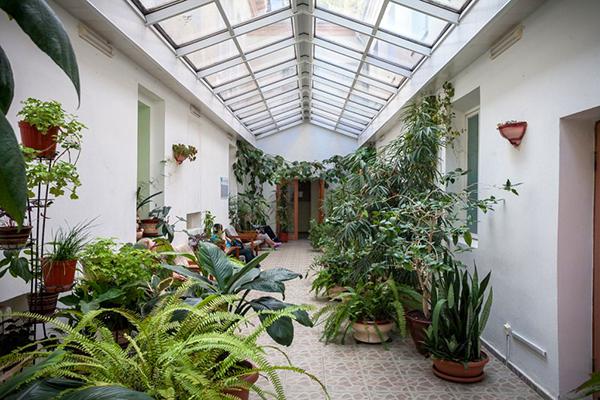 Зимний сад лечебный корпус