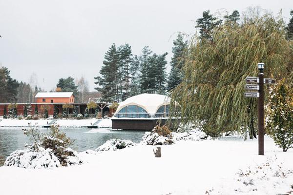Территория (зима)