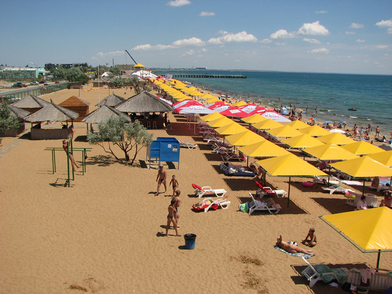 суп золотой пляж в береговом фото золотистых тычинок цветках