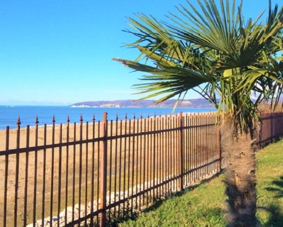 Вид на прибрежную полосу