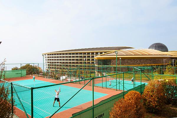 Спорт. Теннисные корты